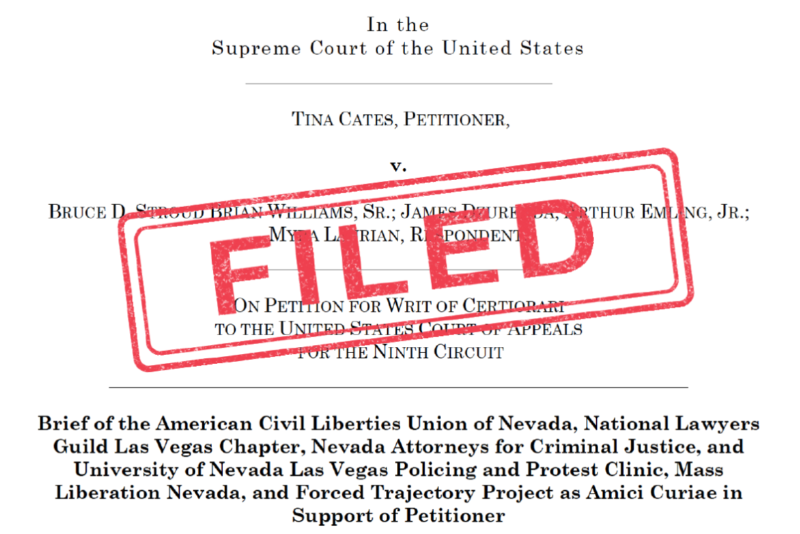 """An image of a legal brief stamped """"filed"""""""