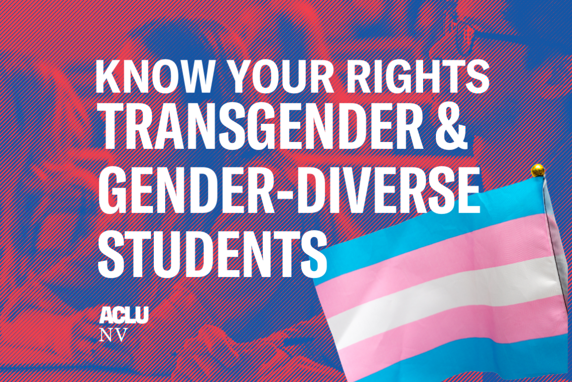 An illustration of students in class with a Transgender Pride flag